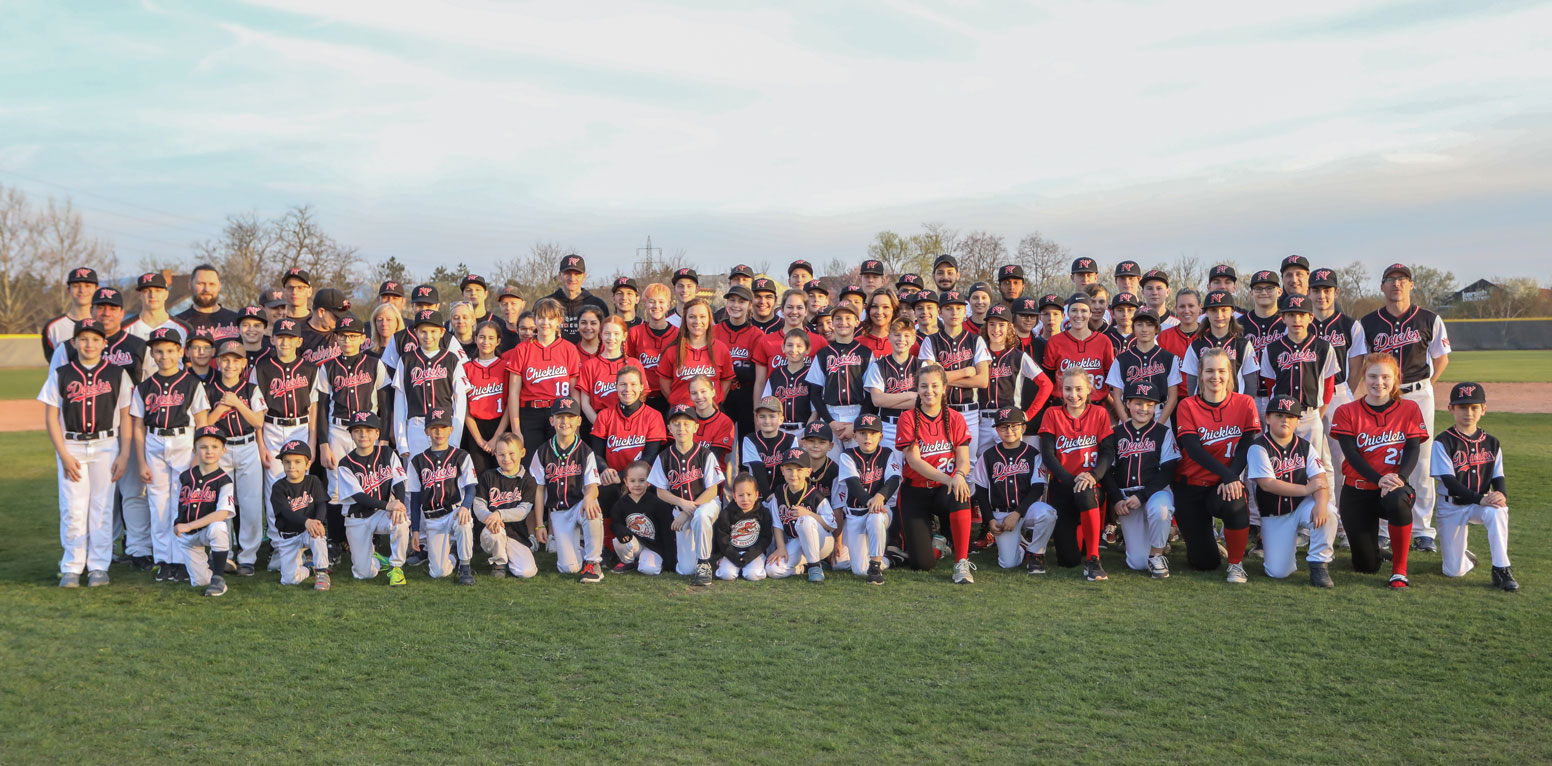all-teams-pic